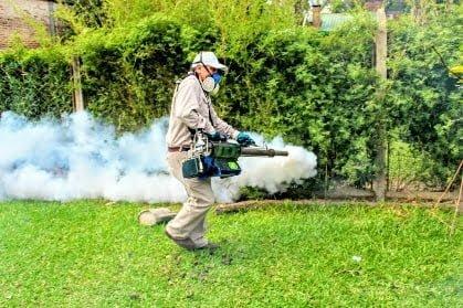 Con 3109 casos de dengue, comienza a bajar en Chaco la curva de contagios
