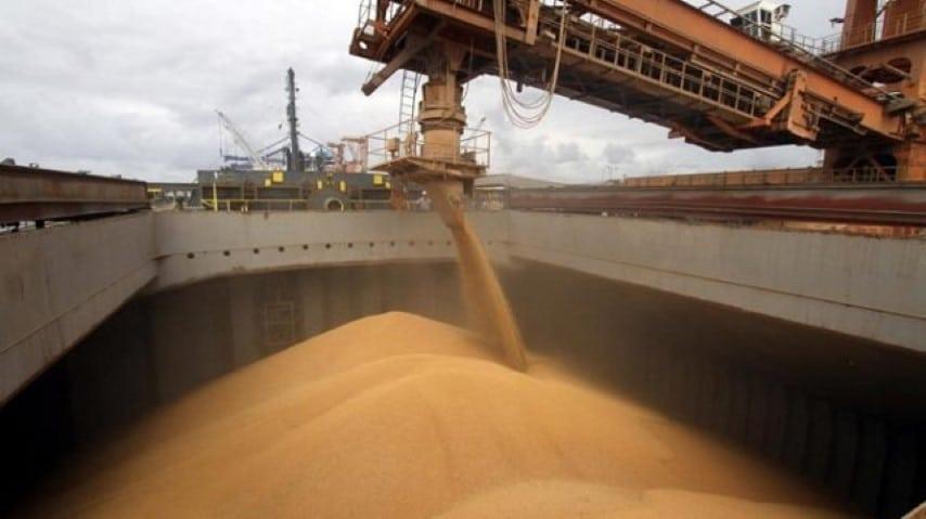 Cuatro empresas internacionales son las responsables del 50% de las exportaciones de granos y 10 empresas argentinas acaparan el 90% del total de los despachos
