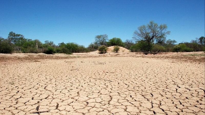 Sequía: Fechaco solicita a la Afip que prorrogue moratoria tributaria