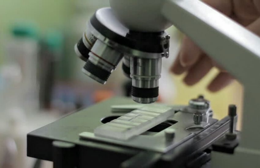 """Elsa Martínez Quiroga: """"Los bioquímicos debemos dejar de estar invisibilizados"""""""
