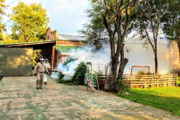 Dengue: Salud Pública desplegó acciones de prevención y control focal